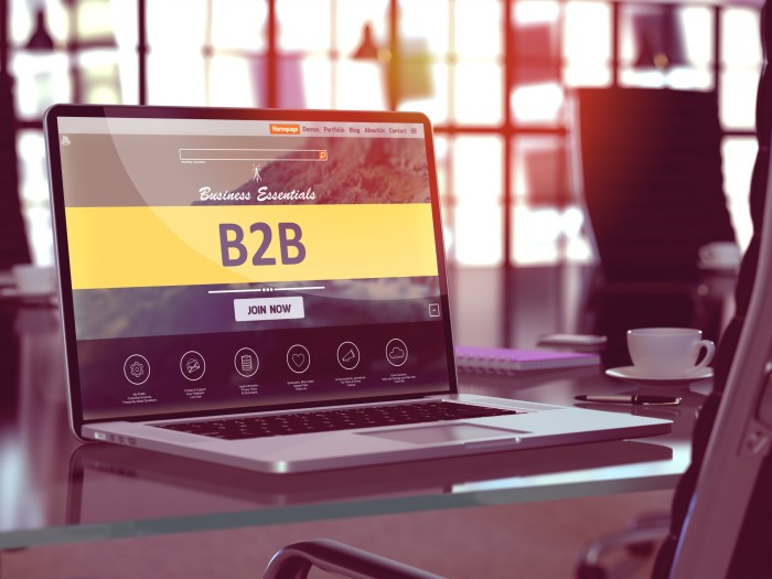 B2B Marketing Strategies for Your Business