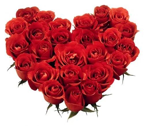 5 aceites afrodisíacos para preparar el Día de los Enamorados