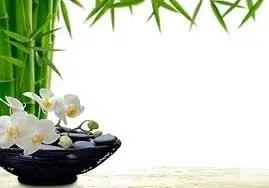 Aprende a utilizar el Feng Shui para perder peso. Parte II