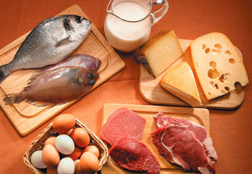 Resultado de imagen para consume proteinas