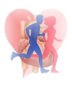 Cuidados para tu salud cardiovascular