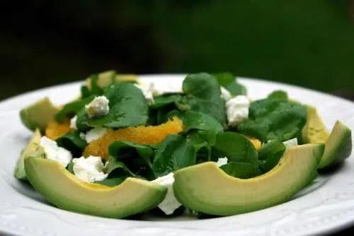 Dieta del aguacate: Ensalada tropicana.