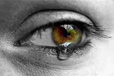Fobias en los niños ¿Cuándo la ansiedad pasa a ser un trastorno?