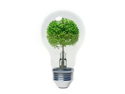 Secretos para tener una casa ecológica