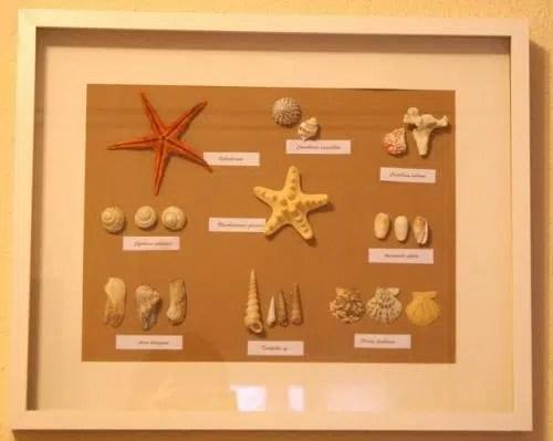 Un detalle marino en nuestra pared: un cuadro hecho con conchas y caracolas