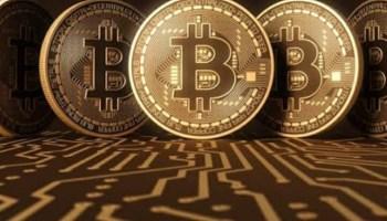 bitcoin africa de sud whatsapp group