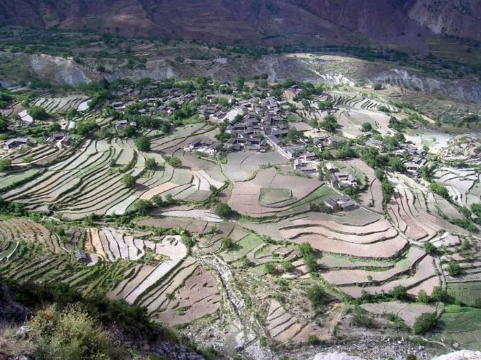 Cultures en terrasse Yunnan