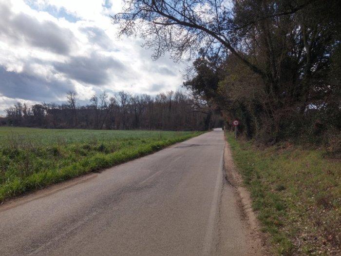 Route de campagne à Fornells de la Selva