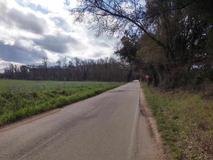 Route de campagne, fornells de la selva