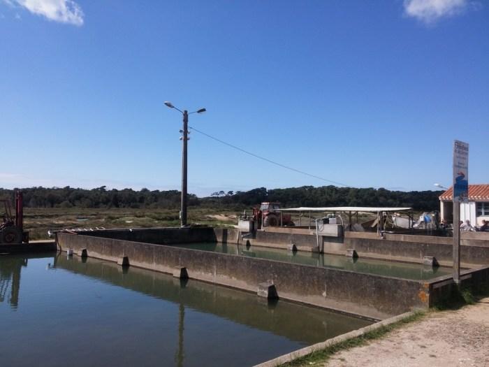 port de la guittiere