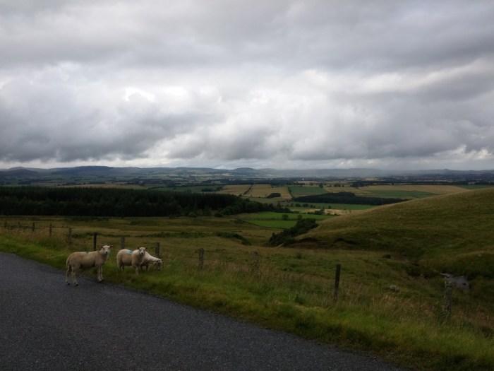 paysage ecosse entre edimbourg et inverness