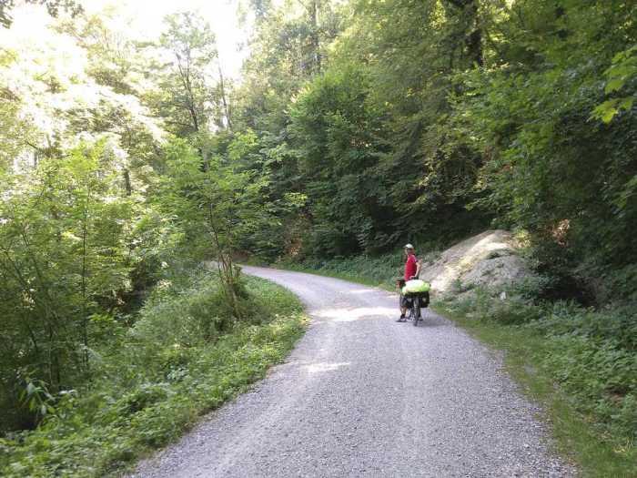 piste foret suisse