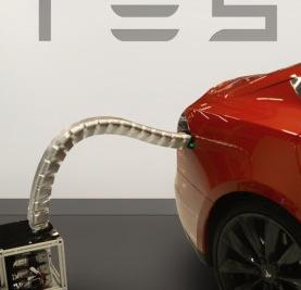 """Embedded software engineer """"snake"""" of Tesla"""