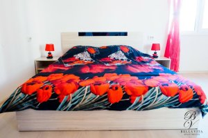 Comfortable Double Bed in Studio Luxury Property for Rent in Blagoevgrad Bulgaria 2018