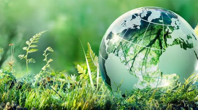 Earth Day: a date that takes us towards a healthier environment and a cleaner world