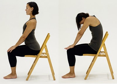 image regarding Printable Chair Yoga Routines titled Chair Yoga: Cat/Cow Extend -