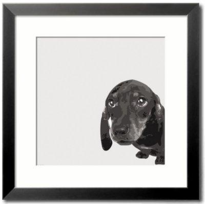cuadro de perro