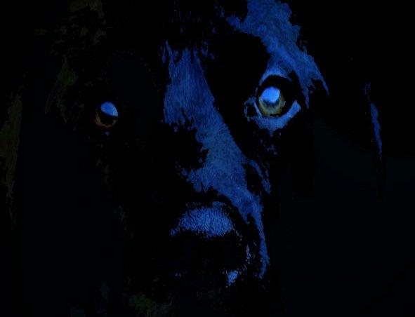 sucesos paranormales y perros