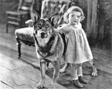 perros que cambiaron la historia