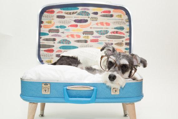 maleta como cama para perro