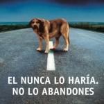 leyes de abandono animal