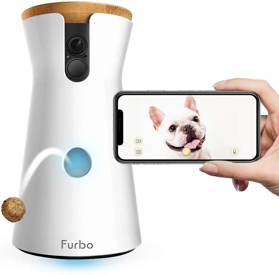 gadgets para perros