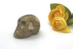 Medium-Sized Rhyolite Skull