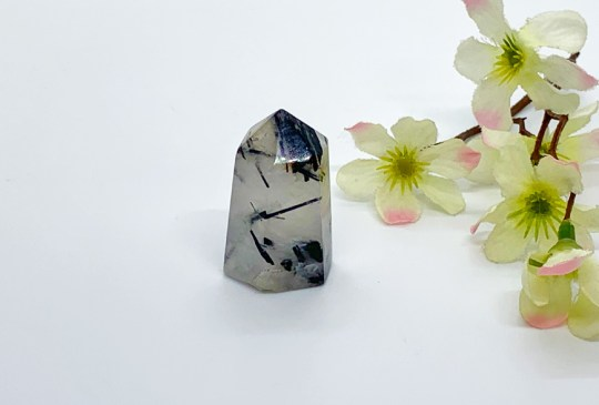 Tourmalinated Quartz Point
