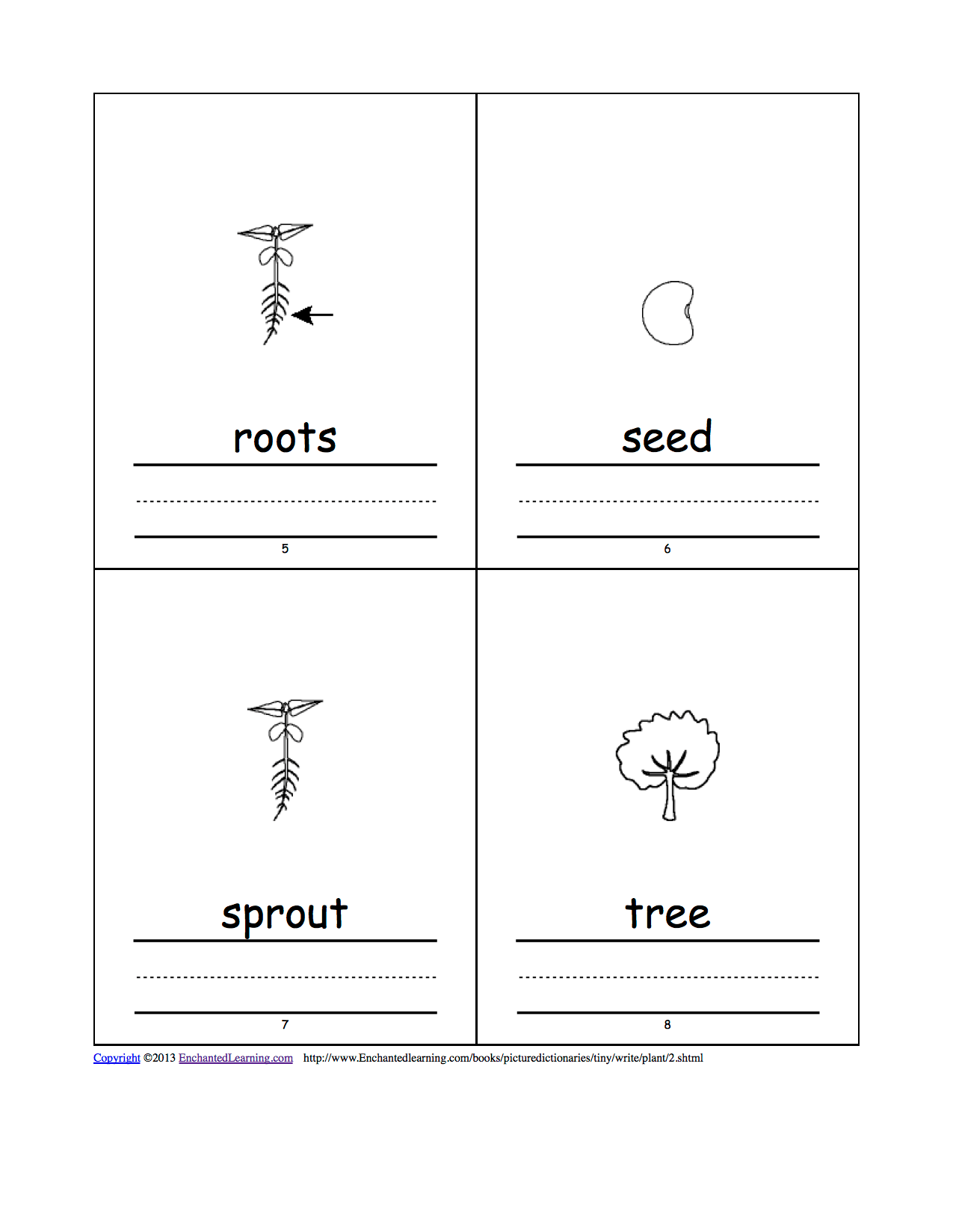 Plant Tiny Picture Dictionary