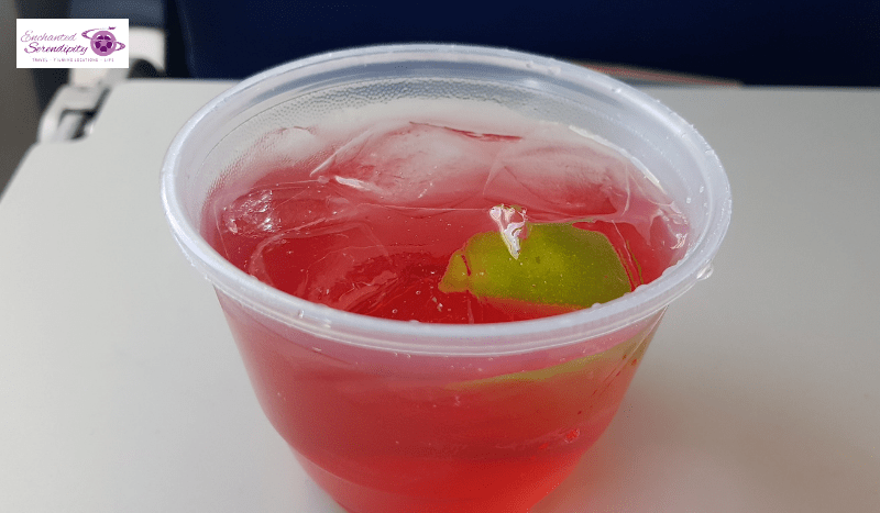 Southwest Vodka and Cranberry Mix Drink
