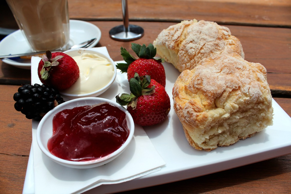 Scones and Jam at Sunny Ridge