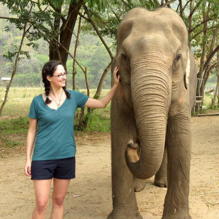 Traveling in Thailand Visiting Elephants