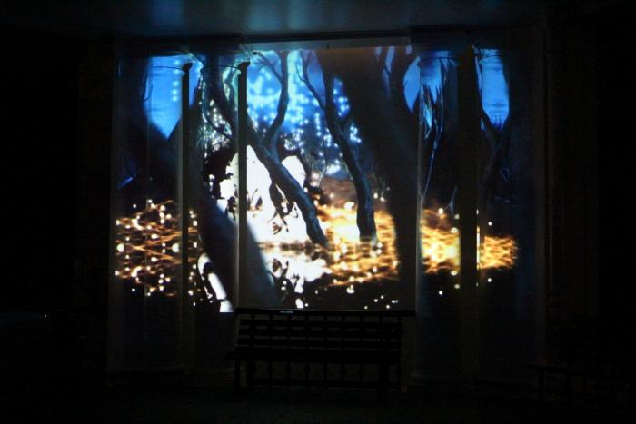 White Night The Rotunda