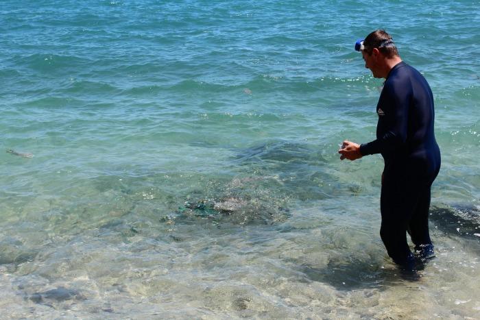 Feeding Fish At Lover's Cove