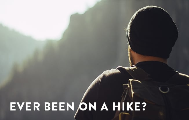 """an image of a hiker conducting their own """"business process review"""" overlooking a mountain range"""