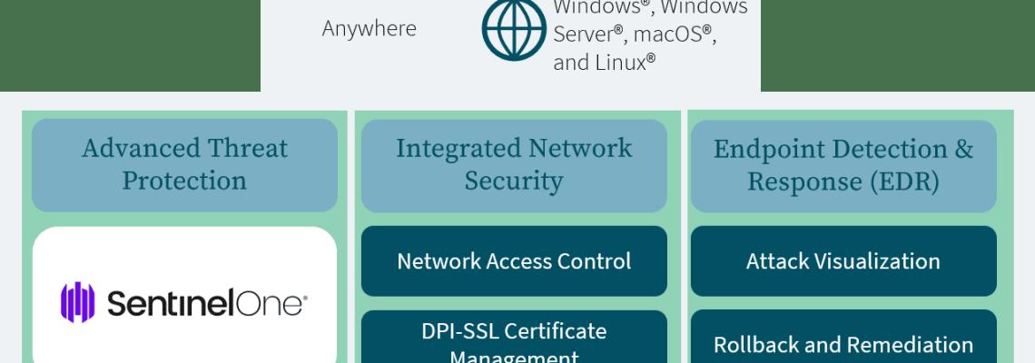 An image of the Epicor Security Suite Capture Client Diagram