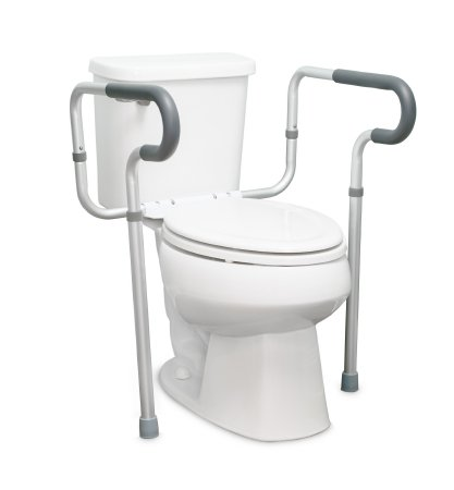 Partial Mount Toilet Safety Rail