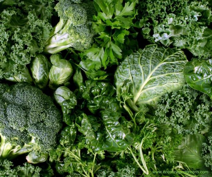 Image result for leafy green vegetables
