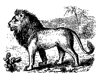 El león enamorado de la hija del labrador