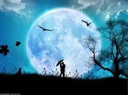 La luna y los enamorados. Historias de amor