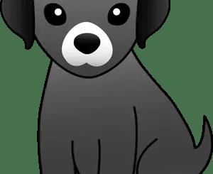 perrito animado