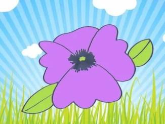 cuentos infantiles de flores