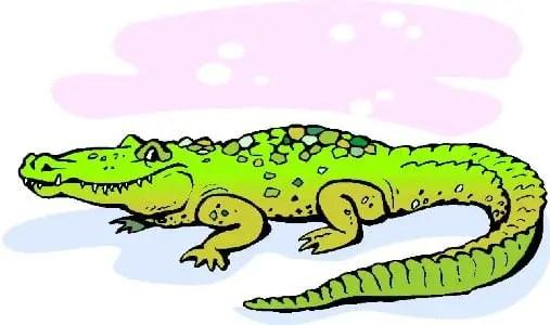 Poemas De Animales Para Ninos Codri El Cocodrilo