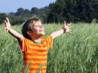 Reflexiones sobre la vida en el campo