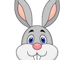 Cuentos de conejos y zanahorias