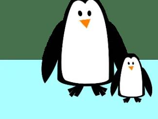 Cuentos de pingüinos para niños