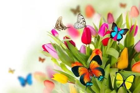 Poemas de primavera que rimen