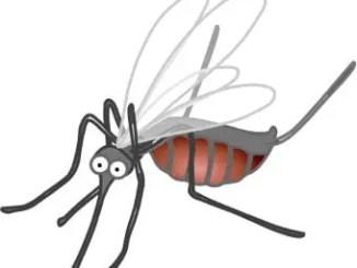 Cuentos que hablan de los mosquitos