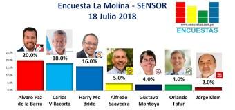 Encuesta La Molina, Sensor – 18 Julio 2018