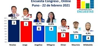 Encuesta Congreso, Online (Puno) – 22 Febrero 2021
